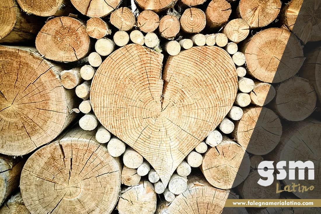 Perché il legno?
